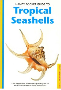 Cover Handy Pocket Guide to Tropical Seashells