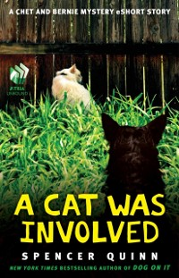 Cover Cat Was Involved