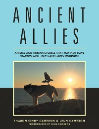Cover Ancient Allies