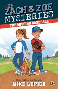 Cover Missing Baseball