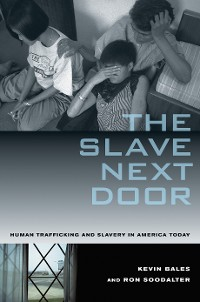 Cover The Slave Next Door