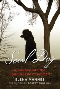 Cover Soul Dog