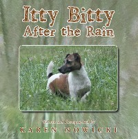 Cover Itty Bitty After the Rain