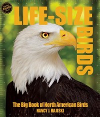 Cover Life Size Birds