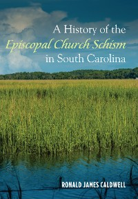 Cover A History of the Episcopal Church Schism in South Carolina