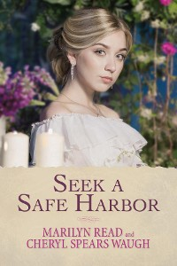 Cover Seek a Safe Harbor