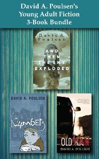 Cover David A. Poulsen's Young Adult Fiction 3-Book Bundle