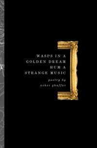 Cover Wasps In A Golden Dream Hum A Strange Music