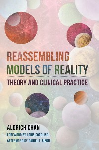 Cover Reassembling Models of Reality: Theory and Clinical Practice (Norton Series on Interpersonal Neurobiology)