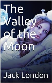Cover The Valley of the Moon