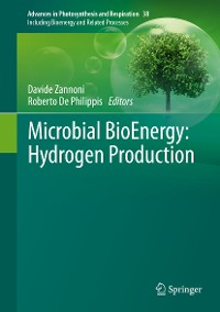 Cover Microbial BioEnergy: Hydrogen Production
