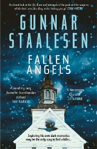Cover Fallen Angels