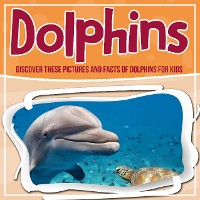 Cover Dolphins: Discover These Pictures And Facts Of Dolphins For Kids