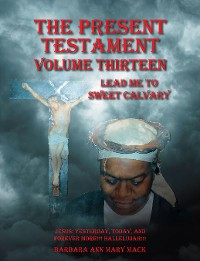 Cover The Present Testament Volume Thirteen