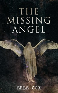 Cover The Missing Angel