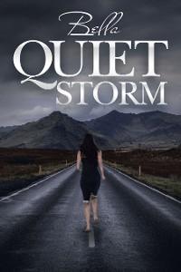 Cover Quiet Storm