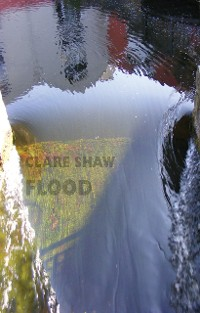 Cover Flood