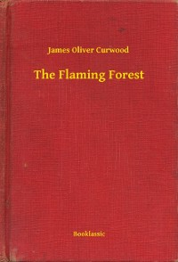 Cover Flaming Forest