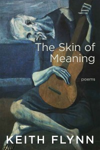 Cover The Skin of Meaning
