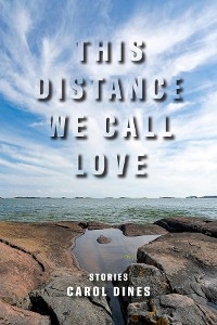 Cover This Distance We Call Love