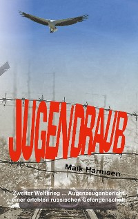 Cover Jugendraub