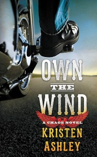 Cover Own the Wind