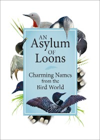 Cover An Asylum of Loons