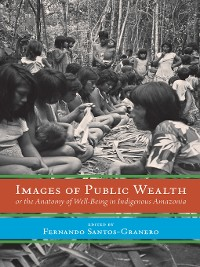 Cover Images of Public Wealth or the Anatomy of Well-Being in Indigenous Amazonia