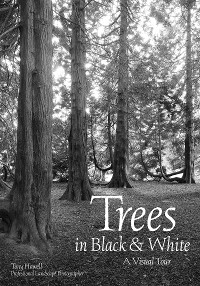 Cover Trees in Black & White