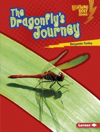 Cover Dragonfly's Journey