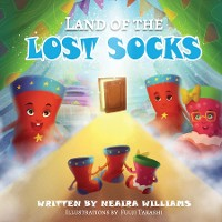 Cover Land of the Lost Socks