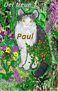 Cover Oma Elli erzählt: Der treue Paul