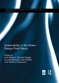 Cover Sustainability in the Water Energy Food Nexus