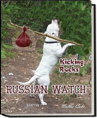 Cover Russian Watch