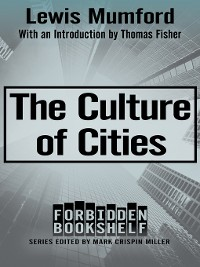 Cover The Culture of Cities