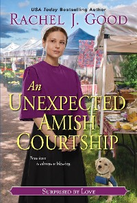 Cover An Unexpected Amish Courtship