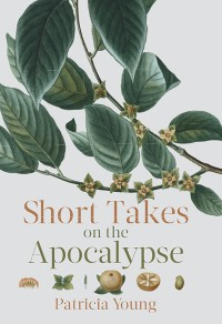 Cover Short Takes on the Apocalypse