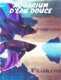 Cover Aquarium d'eau douce