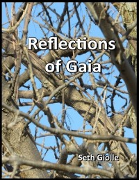 Cover Reflections of Gaia