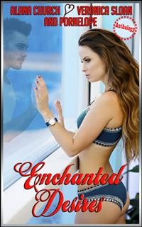 Cover Enchanted Desires
