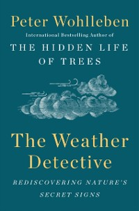 Cover Weather Detective