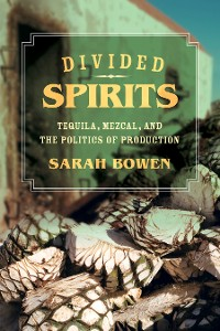 Cover Divided Spirits