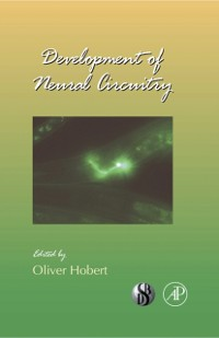 Cover Development of Neural Circuitry