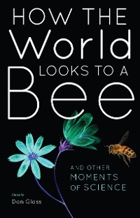 Cover How the World Looks to a Bee