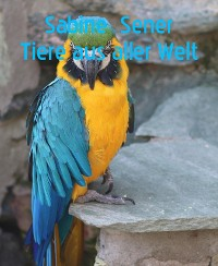 Cover Bunte Tierwelt