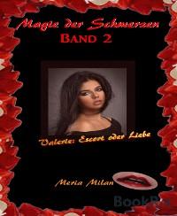 Cover Magie der Schmerzen 2