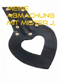 Cover Meine Abmachung mit Mister J,