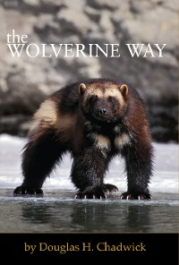 Cover The Wolverine Way