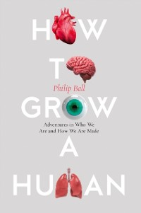 Cover How to Grow a Human: Adventures in Who We Are and How We Are Made