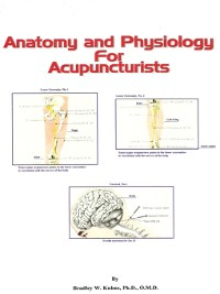 Cover Anatomy and Physiology For Acupuncturists (Made Easy)